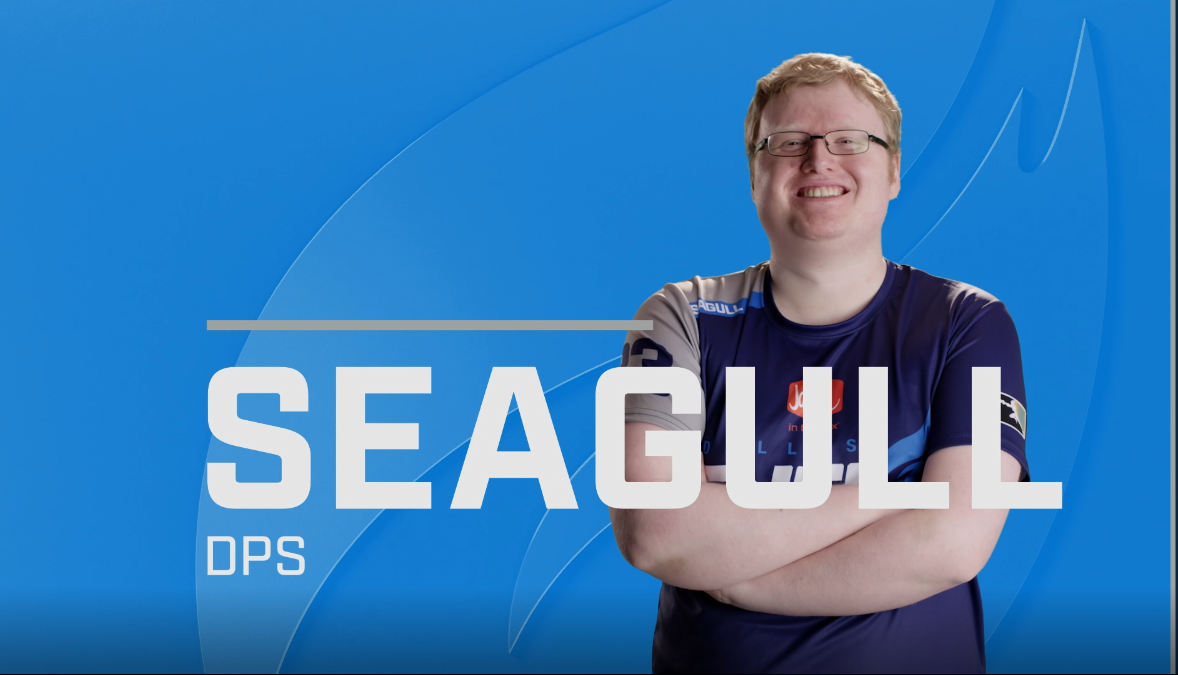 Dallas Fuel's Seagull & London Spitfire's birdring